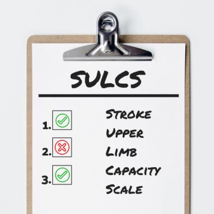 SULCS-scala di valutazione